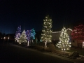 Christmas Lights 683